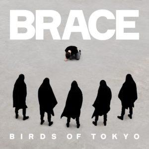 birdsoftokyo_brace-itunes1