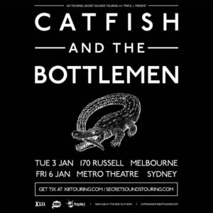 catfish-poster