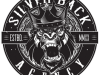 SILVERBACK TOURING's Danny Bazzi Launches THE SILVERBACK AGENCY